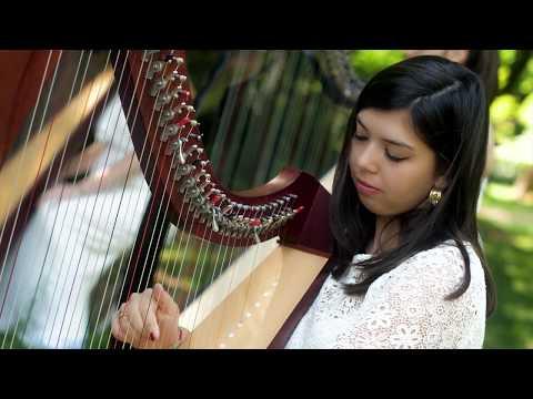 LYRAE - Ensemble di arpe celtiche - NUVOLE BIANCHE - Einaudi