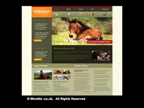 Pets Animal related web design samples ( MixoBiz )