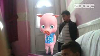 Zoobe Pets - gfgh yggg