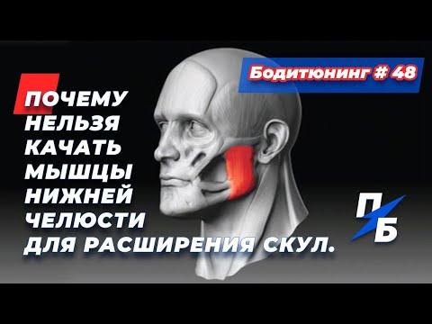 Почему нельзя качать мышцы челюсти для расширения скул. Какие проблемы это принесёт. Бодитюнинг #48
