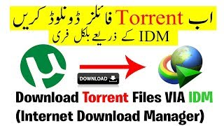 download torrent with idm unlimited size