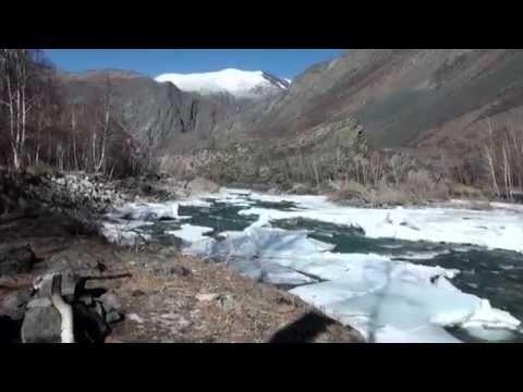 Аргутский лёд (2015)