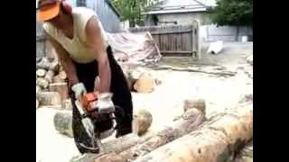 Gabi la tăiat lemne cu stihl