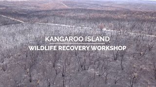 Kangaroo Island Post-fire Wildlife Recovery Workshop