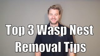 Top 3 Wasp Nest Removal Tips