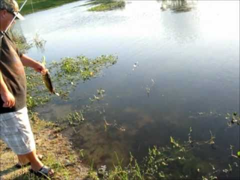 Bass Fishing at the Pond 4-6-2011