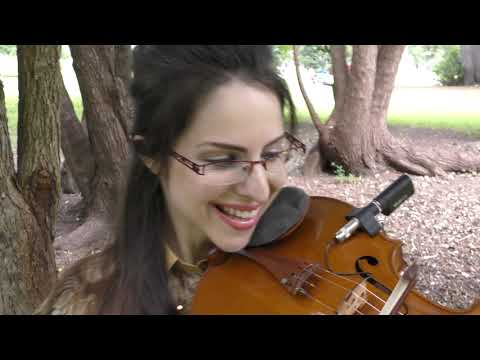 J. S. Bach Cello Suite #1 Allemande on the Viola