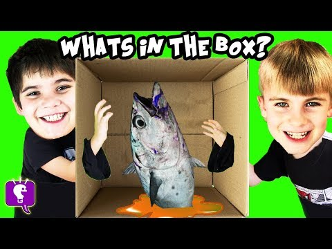 WHAT'S IN THE BOX? Challenge with HobbyKids