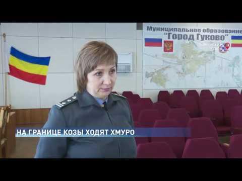 В Ростовской области пересечена попытка незаконного перемещения мелкого рогатого скота