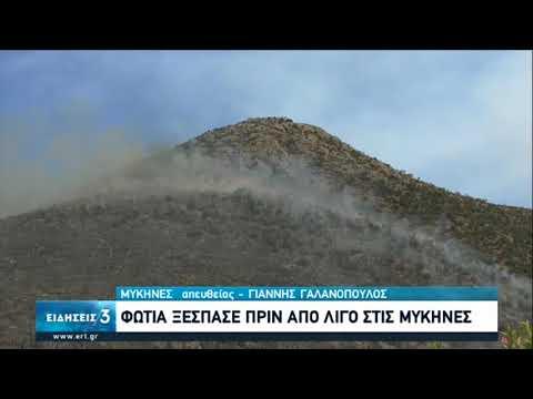 Πυρκαγιά στις Μυκήνες – Εκκενώθηκε προληπτικά ο αρχαιολογικός χώρος | 30/08/2020 | ΕΡΤ