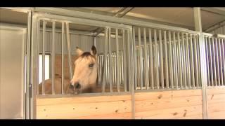 AmeriStall Horse Barns