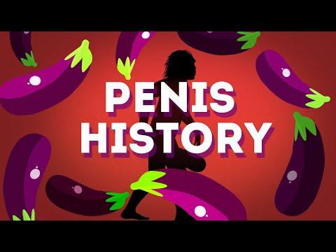Hogyan izgatja a pénisz