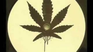 4/20 Dubstep Ganja Mix 2010 by sKRiLLz (FREE HR MIX DOWNLOAD)