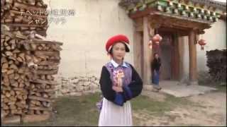 チベット族の女性ツームー18歳 動画キャプチャー
