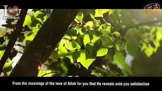 Мудрость – бесценный дар Всевышнего! Шейх Мухаммад Ратиб Набульси