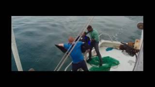 Baywatch Baywatch S06E01 Forbidden Paradise 1Baywatch 201 7  Dwayne Johnson Zac Effron Priyanka