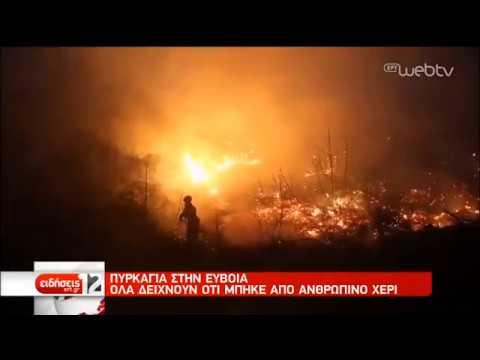 Όλα δείχνουν ότι η πυρκαγιά στην Εύβοια μπήκε από ανθρώπινο χέρι | 21/08/2019 | ΕΡΤ