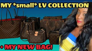 MY ENTIRE *small* 2020 LOUIS VUITTON BAG COLLECTION + My NEW LV Bag