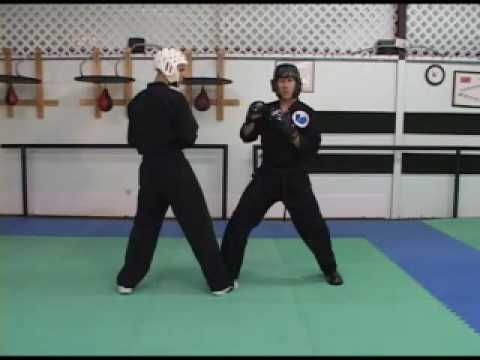 How to Sport Karate Adding the back knuckle reverse punch