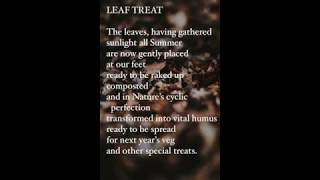 Leaf Treat