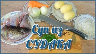 Рыбный суп из Судака | Мужицкая кухня | Суп из свежей рыбы