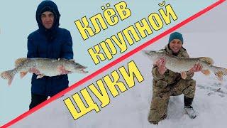 Рыбалка зимняя в харьковской областей
