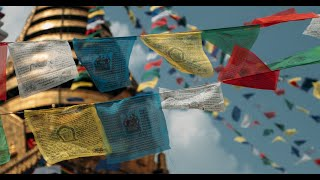 Newswise:Video Embedded in-nepal-with-dr-melanie-mccauley