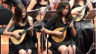 Concerto in G Major for Two Mandolins and Orchestra - Allegro - Antonio Vivaldi