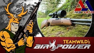 Air Gun Shooting & Review – Air Arms TX200
