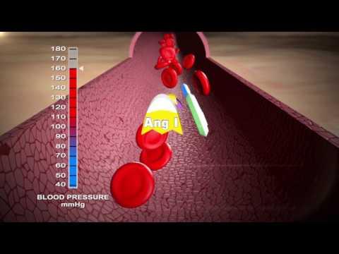 Luhatjet e rregullta në valë të presionit të gjakut