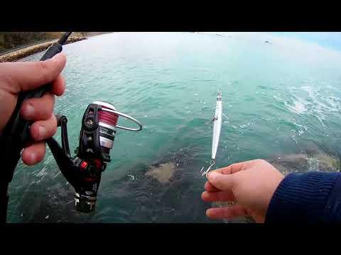 Comprare la macchina fotografica per pesca