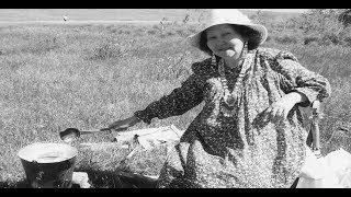 О себе: СВЕТЛАНА АЛЕКСЕЕВА | Выпуск 75