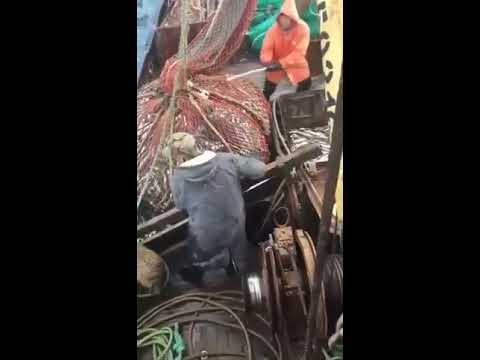 La pesca allinizio di aprile su una verga di galleggiante il programma il pescatore al pescatore