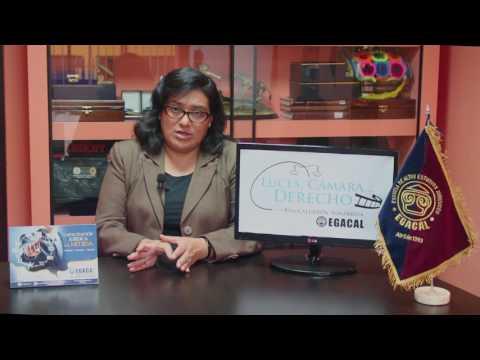 Programa 24 - La Detención Policial - Luces Camara Derecho - Egacal