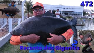 Grandes Peixes no Recanto dos Gigantes II - Fishingtur na TV  472