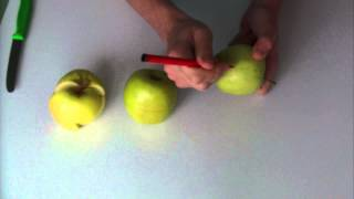 Skládací jablko