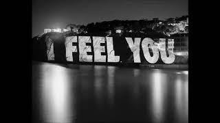Schiler - I feel you  ( Dreamers Inc remix )