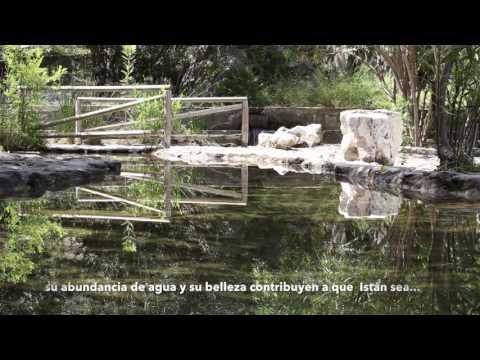 Nacimiento de Rio Molinos