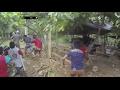Download Video Polisi Datang Tiba-tiba, Pelaku Judi Sabung Ayam Lari Mengibrit Ketakutan -  86