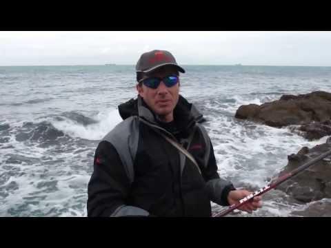 Questo su che beccate in pesca per amici