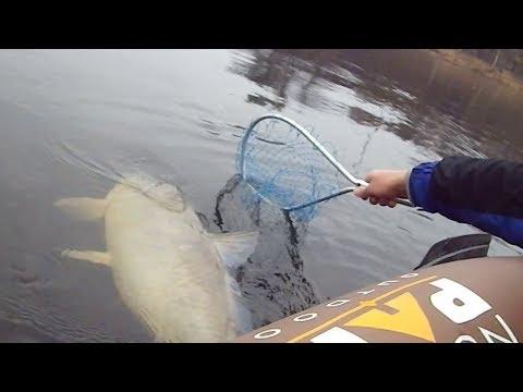 , title : '#6 Необычные случаи на рыбалке!'
