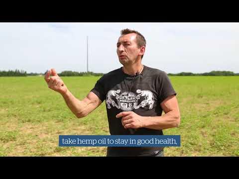 Natural Hemp Drink, Unsweetened, Organic, Sojade (1 litre)
