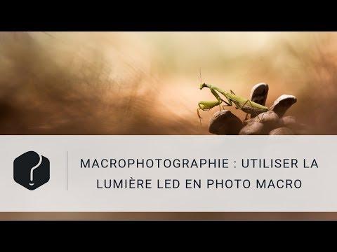 FR Lampe Macro Led 2 Têtes Flexible pour Boîtiers Reflex