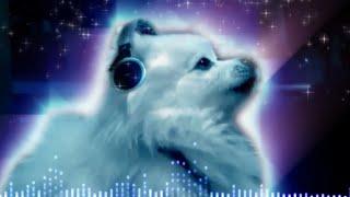 Смотреть онлайн Музыка, которая создана с помощью животных