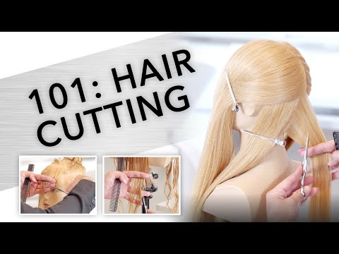 101: Learning the Basics of Haircutting | Kenra Professional
