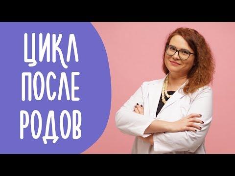 Восстановление Менструального Цикла После Родов   Family is...