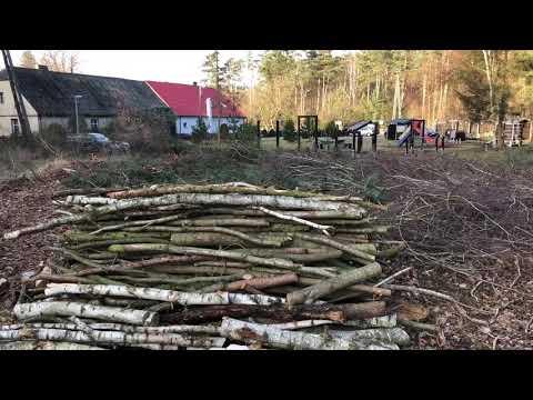 Wideo1: Wycinka lasu na Nowym Świecie