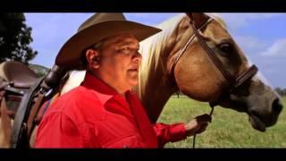 Llanura Yo Soy Tu Hijo - Alexis Unda  (Video)