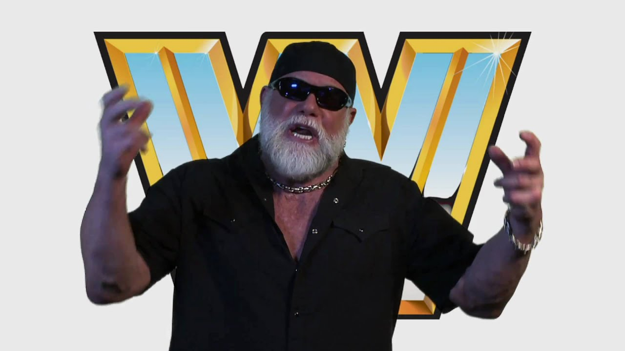 A Video Game Reunites The WWE And The Macho Man