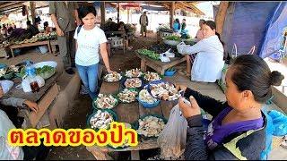 ตะลอนไปใน Vietnam EP2:ตลาดของป่าบ้านโคกสว่าง เมืองยมมะลาด สะออนเห็ดและของป่านานาชนิด